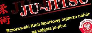 juju_300