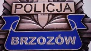 policja_300