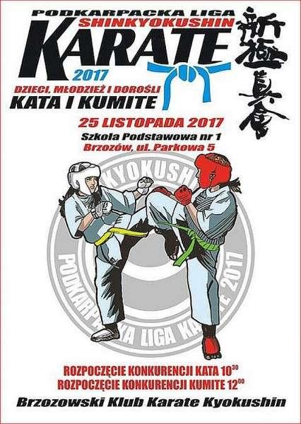 Finał Podkarpackiej Ligi Karate