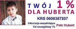 hubert300_300
