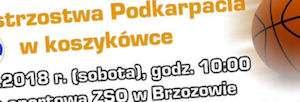 kosz_300