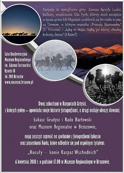 Hucuły - konie Karpat Wschodnich