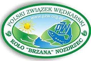brzana_300